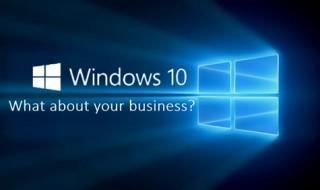 Windows-10-business-negocio