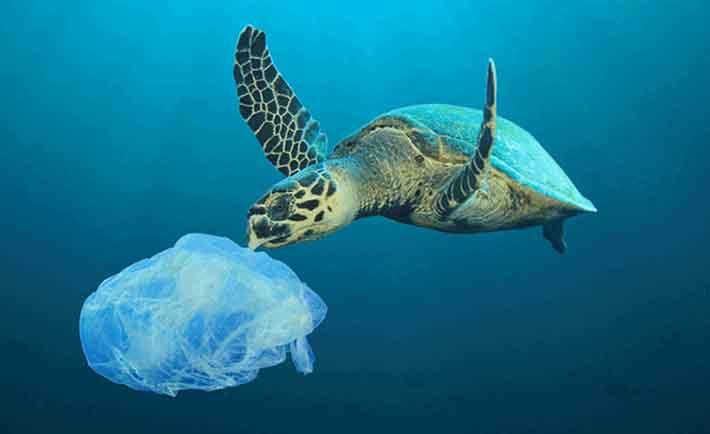 Las nuevas HP Pavilion están hechas con plástico rescatado del océano.